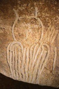 Chauvet Cave: Owl